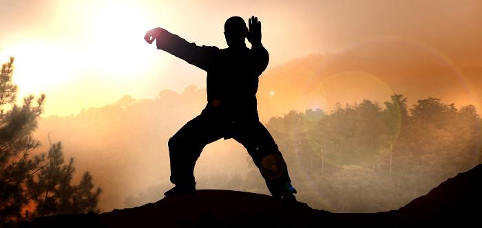 Tai chi Chuan Bodhi Yoga Mestre